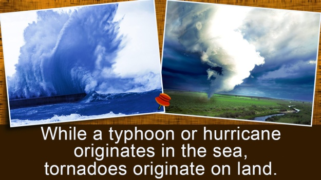 Hurricane Tornado Facts